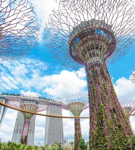 paquete sudeste asiatico garden by the bay singapur